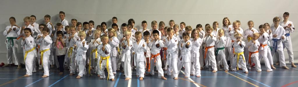 Jeugd karate zelfverdediging Hendrik-Ido-Ambacht