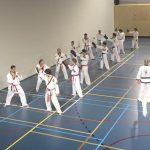 Tang Soo Do karate Hendrik-Ido-Ambacht